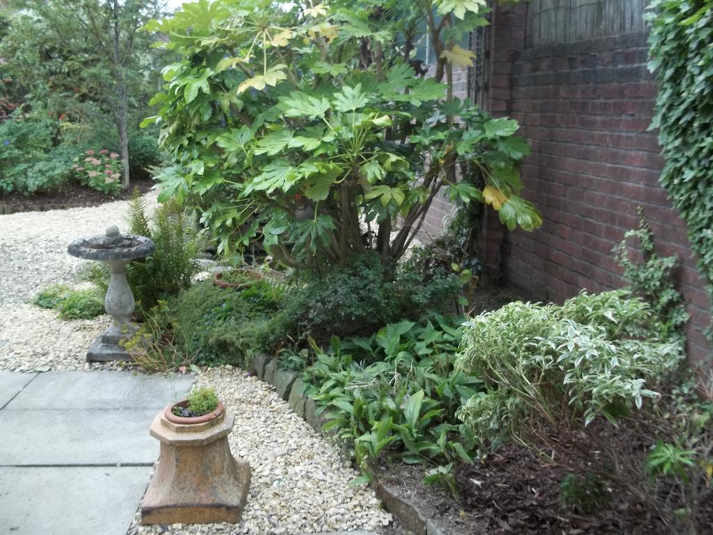 Mountain mist garden maintenance caerphilly for Garden maintenance